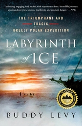 Labyrinth of Ice Book Cover - Click to see book details