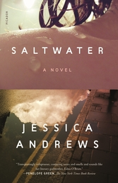 Saltwater Book Cover - Click to open New Releases panel