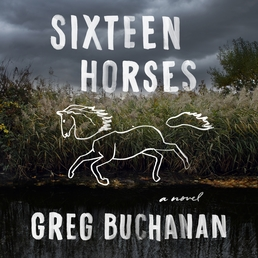 Sixteen Horses Book Cover - Click to open Audiobooks panel