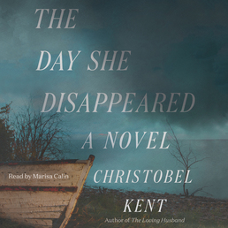 The Day She Disappeared Book Cover - Click to open Coming Soon panel
