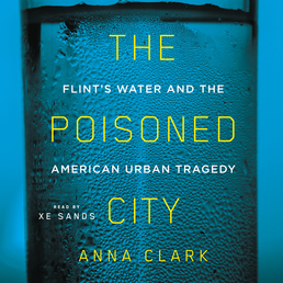 The Poisoned City Book Cover - Click to open Audiobooks panel