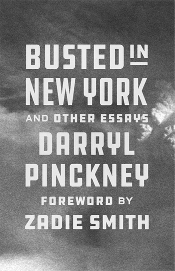 Busted in New York and Other Essays
