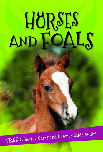 It's all about... Horses and Foals
