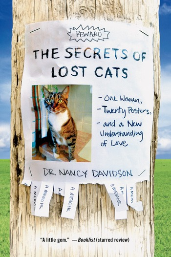 The Secrets of Lost Cats