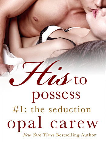 His to Possess #1: The Seduction
